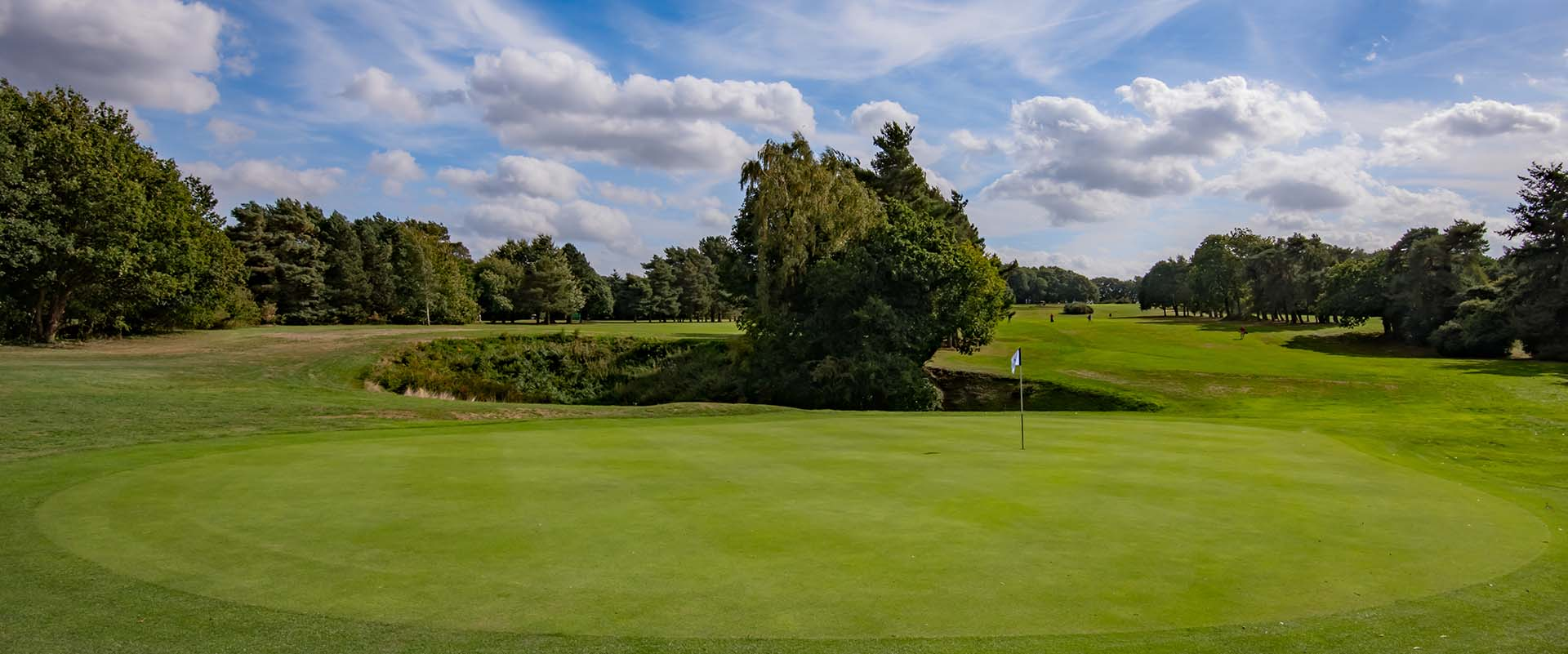 Royal Norwich green at Hellesdon course
