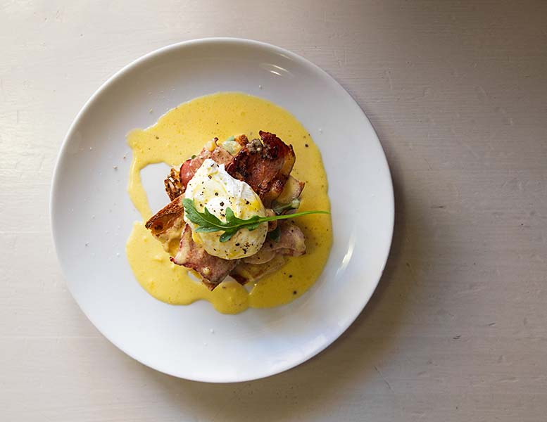 Gourmet eggs benedict with bacon